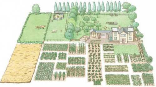 Small self-sufficient farms / Granjitas autosuficientes