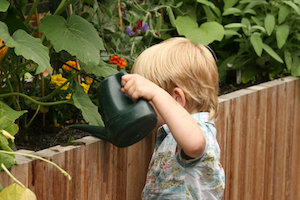 The health of growing / La salud en cultivar